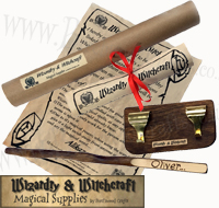 Children's / Kids Personalised Wooden Wizard Wand and display stand set £12.99